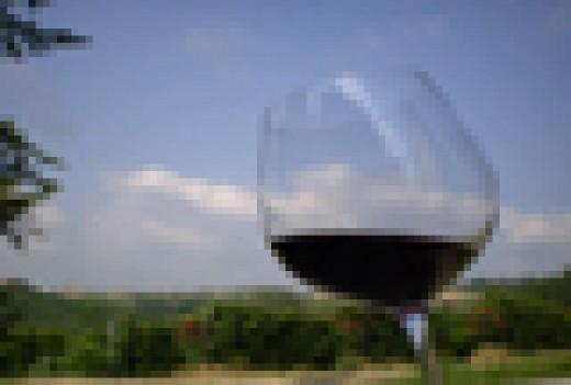 Curso b sico de cata de vinos en barcelona 2 sesiones for Cata de vinos barcelona